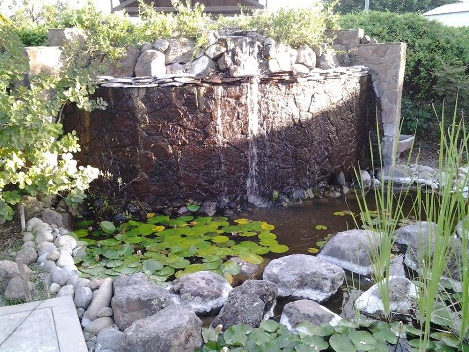 Landscape-Design-Water-Feature